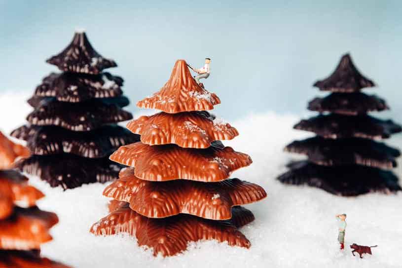 kerstboom1web